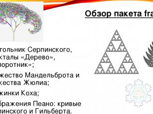 Обзор пакета fractals треугольник Серпинского, фракталы «Дерево», «Папоротник»;