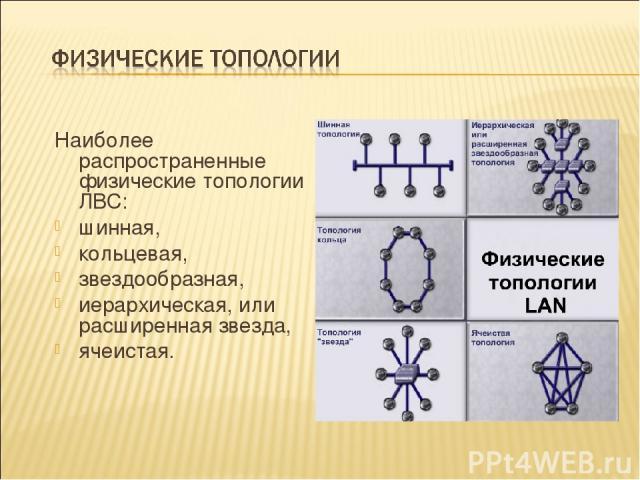 Наиболее распространенные физические топологии ЛВС: шинная, кольцевая, звездообразная, иерархическая, или расширенная звезда, ячеистая.