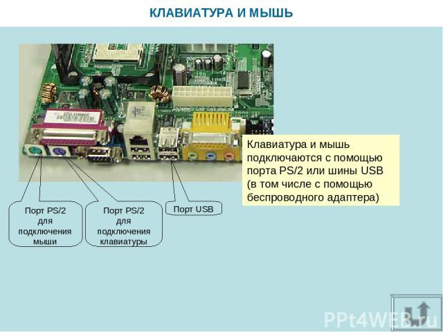 КЛАВИАТУРА И МЫШЬ Клавиатура и мышь подключаются с помощью порта PS/2 или шины USB (в том числе с помощью беспроводного адаптера) Порт USB Порт PS/2 для подключения мыши Порт PS/2 для подключения клавиатуры