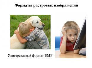 Форматы растровых изображений Универсальный формат BMP