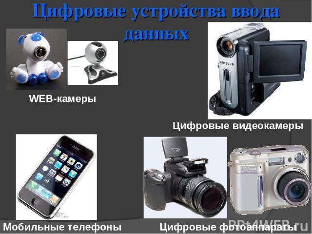 Цифровые устройства ввода данных WEB-камеры Мобильные телефоны Цифровые фотоаппараты Цифровые видеокамеры