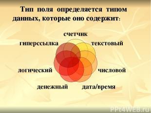 Тип поля определяется типом данных, которые оно содержит: