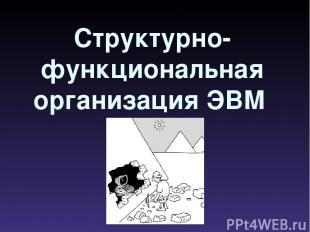 Структурно-функциональная организация ЭВМ