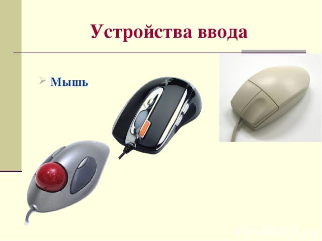 Устройства ввода Мышь