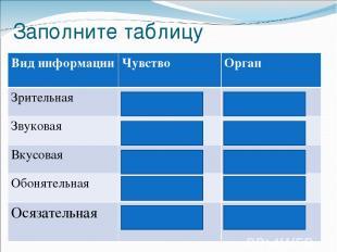 Заполните таблицу Вид информации Чувство Орган Зрительная Зрение Глаза Звуковая