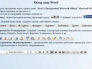Рис. 6.1. Окно программы Microsoft Word