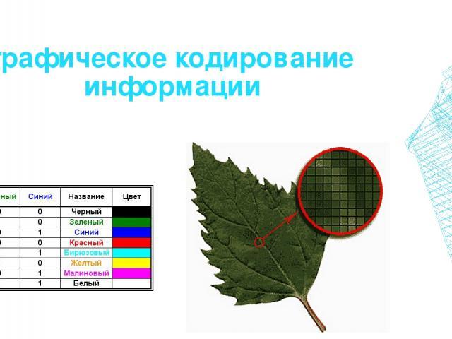 графическое кодирование информации