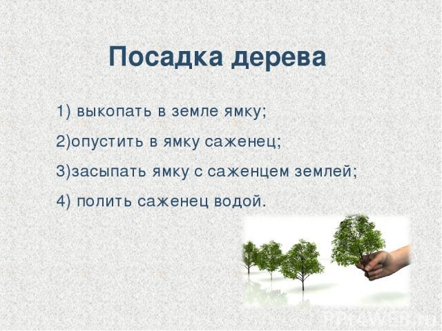 Посадка дерева 1) выкопать в земле ямку; 2)опустить в ямку саженец; 3)засыпать ямку с саженцем землей; 4) полить саженец водой.