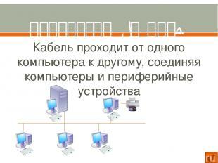 Компоненты локальной сети Для организации локальной сети необходимо установить в