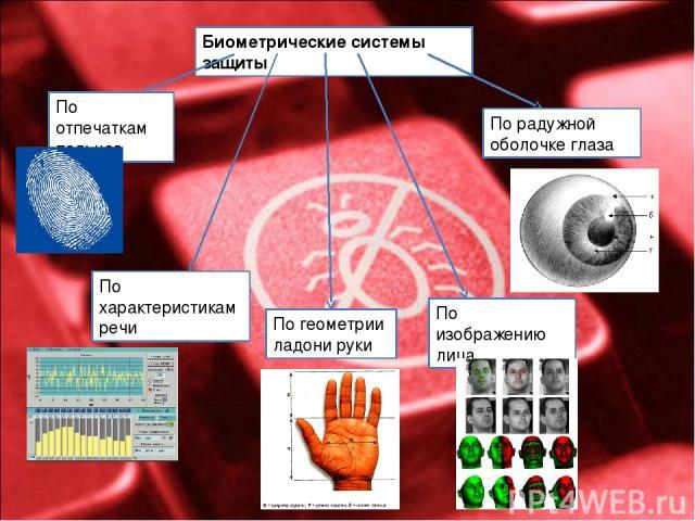 Биометрические системы защиты По отпечаткам пальцев По характеристикам речи По геометрии ладони руки По радужной оболочке глаза По изображению лица