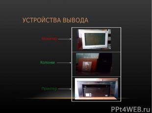 УСТРОЙСТВА ВЫВОДА Монитор Колонки Принтер