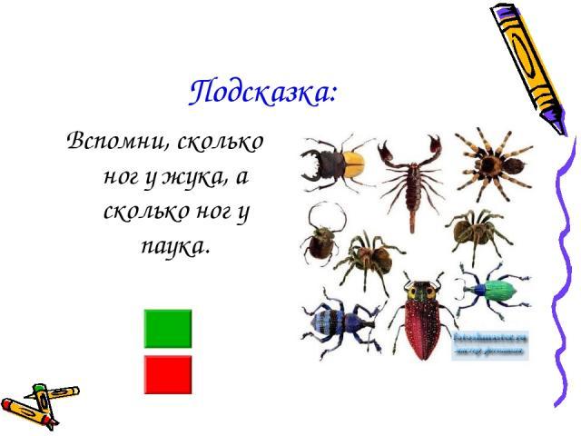 Подсказка: Вспомни, сколько ног у жука, а сколько ног у паука.