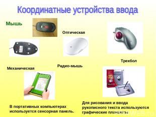 Мышь Трекбол В портативных компьютерах используется сенсорная панель. Для рисова