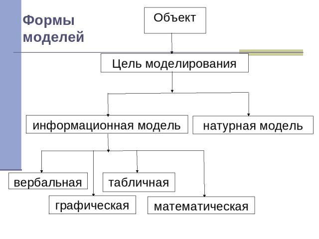 Формы моделей