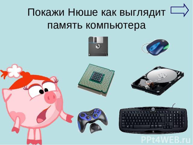 Покажи Нюше как выглядит память компьютера