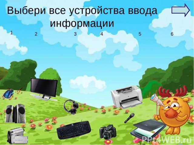 Выбери все устройства ввода информации 1 2 4 3 5 6