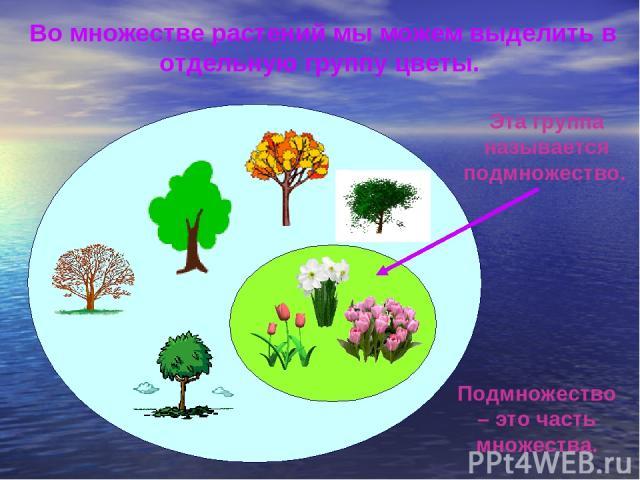 Во множестве растений мы можем выделить в отдельную группу цветы. Подмножество – это часть множества. Эта группа называется подмножество.