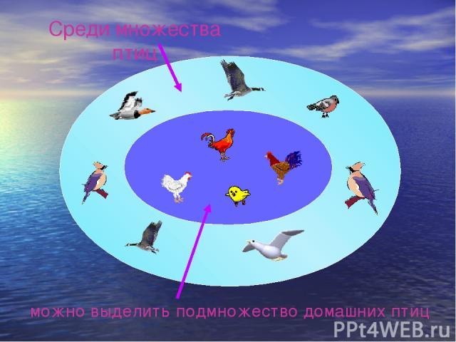 можно выделить подмножество домашних птиц Среди множества птиц