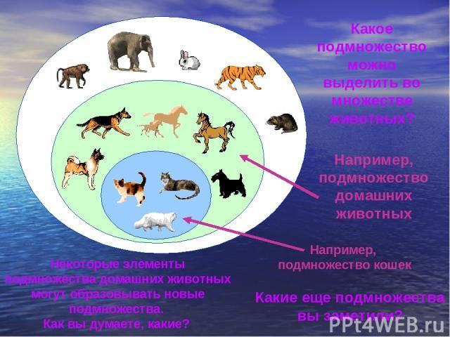 Какое подмножество можно выделить во множестве животных? Например, подмножество домашних животных Некоторые элементы подмножества домашних животных могут образовывать новые подмножества. Как вы думаете, какие? Например, подмножество кошек Какие еще …