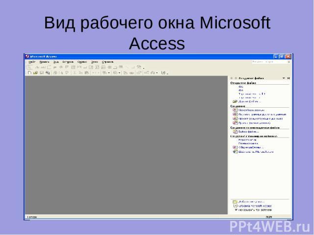 Вид рабочего окна Microsoft Access