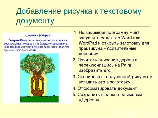 Добавление рисунка к текстовому документу 1. Не закрывая программу Paint, запустить редактор Word или WordPad и открыть заготовку для практикума «Удивительные деревья» 2. Почитать описание дерева и переключившись на Paint изобразить его 3. Скопирова…
