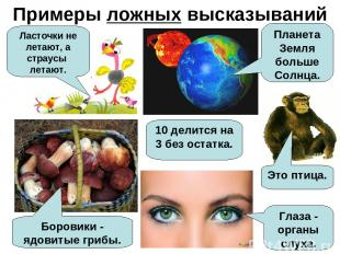 Примеры ложных высказываний Ласточки не летают, а страусы летают. Планета Земля
