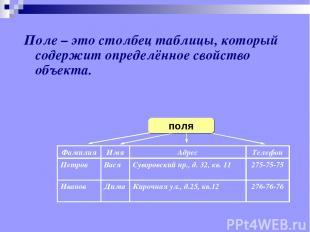 Поле – это столбец таблицы, который содержит определённое свойство объекта. Фами