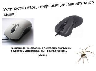 Устройство ввода информации: манипулятор мышь Не зверушка, не летаешь, а по ковр