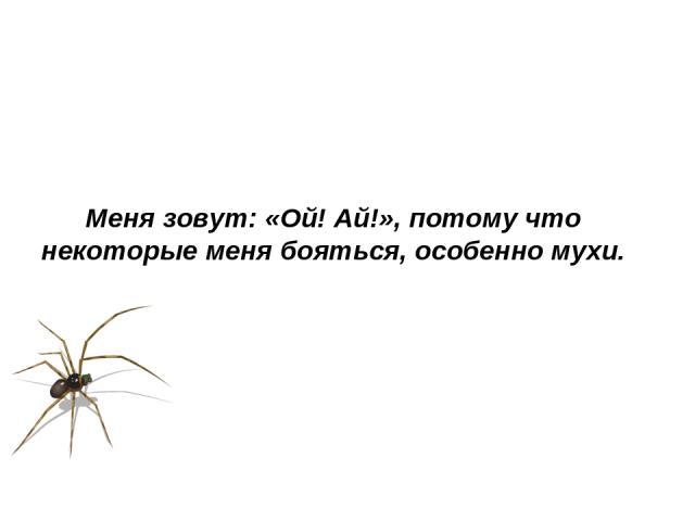 Меня зовут: «Ой! Ай!», потому что некоторые меня бояться, особенно мухи.