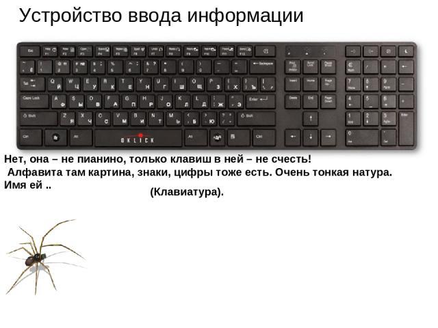 Устройство ввода информации Нет, она – не пианино, только клавиш в ней – не счесть! Алфавита там картина, знаки, цифры тоже есть. Очень тонкая натура. Имя ей .. (Клавиатура).