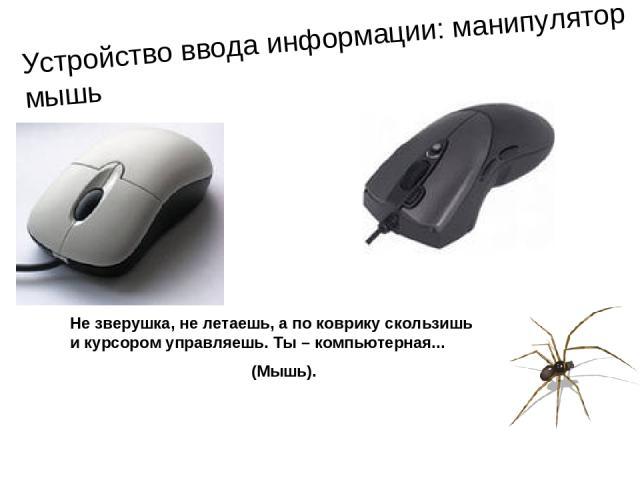 Устройство ввода информации: манипулятор мышь Не зверушка, не летаешь, а по коврику скользишь и курсором управляешь. Ты – компьютерная... (Мышь).