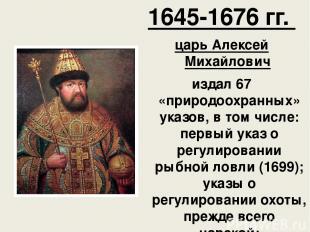 1645-1676 гг. царь Алексей Михайлович издал 67 «природоохранных» указов, в том