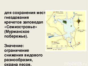 для сохранения мест гнездования кречетов заповедал «Семиостровье» (Мурманское по