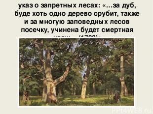 указ о запретных лесах: «…за дуб, буде хоть одно дерево срубит, также и за многу