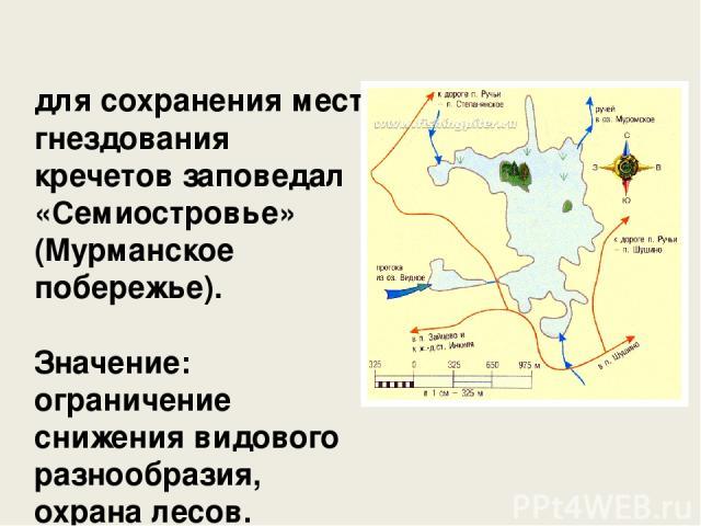 для сохранения мест гнездования кречетов заповедал «Семиостровье» (Мурманское побережье). Значение: ограничение снижения видового разнообразия, охрана лесов.