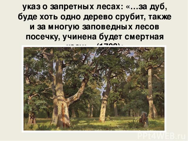 указ о запретных лесах: «…за дуб, буде хоть одно дерево срубит, также и за многую заповедных лесов посечку, учинена будет смертная казнь» (1703);