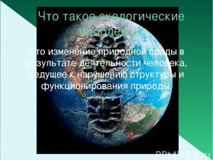 Что такое экологические проблемы? Это изменение природной среды в результате дея