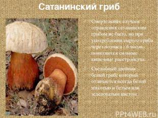Сатанинский гриб Смертельных случаев отравления сатанинским грибом не было, но п