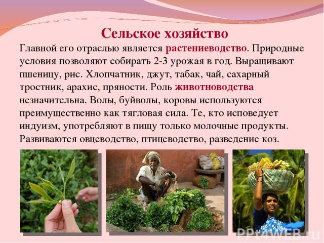 Сельское хозяйство Главной его отраслью является растениеводство. Природные условия позволяют собирать 2-3 урожая в год. Выращивают пшеницу, рис. Хлопчатник, джут, табак, чай, сахарный тростник, арахис, пряности. Роль животноводства незначительна. В…