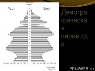 Демографическая пирамида