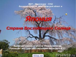 МОУ – Ивановская СОШ Баганского района Новосибирской области Выполнил ученик 11