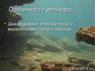 Особенности рельефа. Дно покрывают илистые пески с вкраплениями гальки и валунов