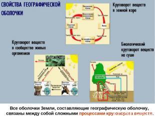 Все оболочки Земли, составляющие географическую оболочку, связаны между собой сл