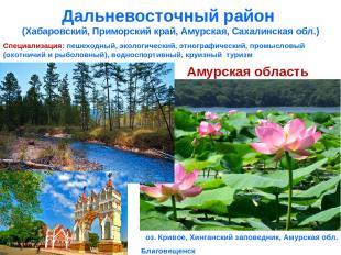 Дальневосточный район (Хабаровский, Приморский край, Амурская, Сахалинская обл.)