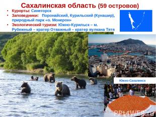 Сахалинская область (59 островов) Курорты: Синегорск Заповедники: Поронайский, К