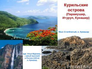 Курильские острова (Парамушир, Итуруп, Кунашир) а Мыс Столбчатый, о. Кунашир вдп