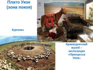 Плато Укок (зона покоя) Курганы Краеведческий музей – экспозиция «Принцесса Укок