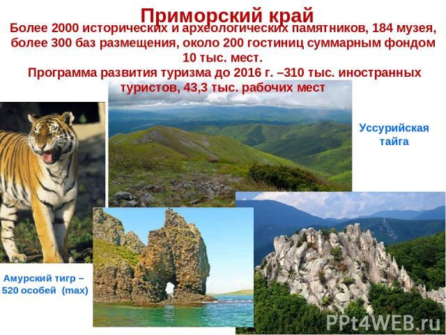 Приморский край Амурский тигр – 520 особей (max) Уссурийская тайга Более 2000 исторических и археологических памятников, 184 музея, более 300 баз размещения, около 200 гостиниц суммарным фондом 10 тыс. мест. Программа развития туризма до 2016 г. –31…