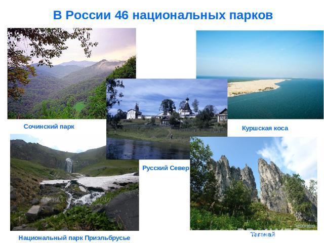 В России 46 национальных парков Таганай Сочинский парк Национальный парк Приэльбрусье Куршская коса Русский Север