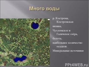 р. Кострома, Костромская низина, Чухломское и Галичское озёра, болота, наибольше